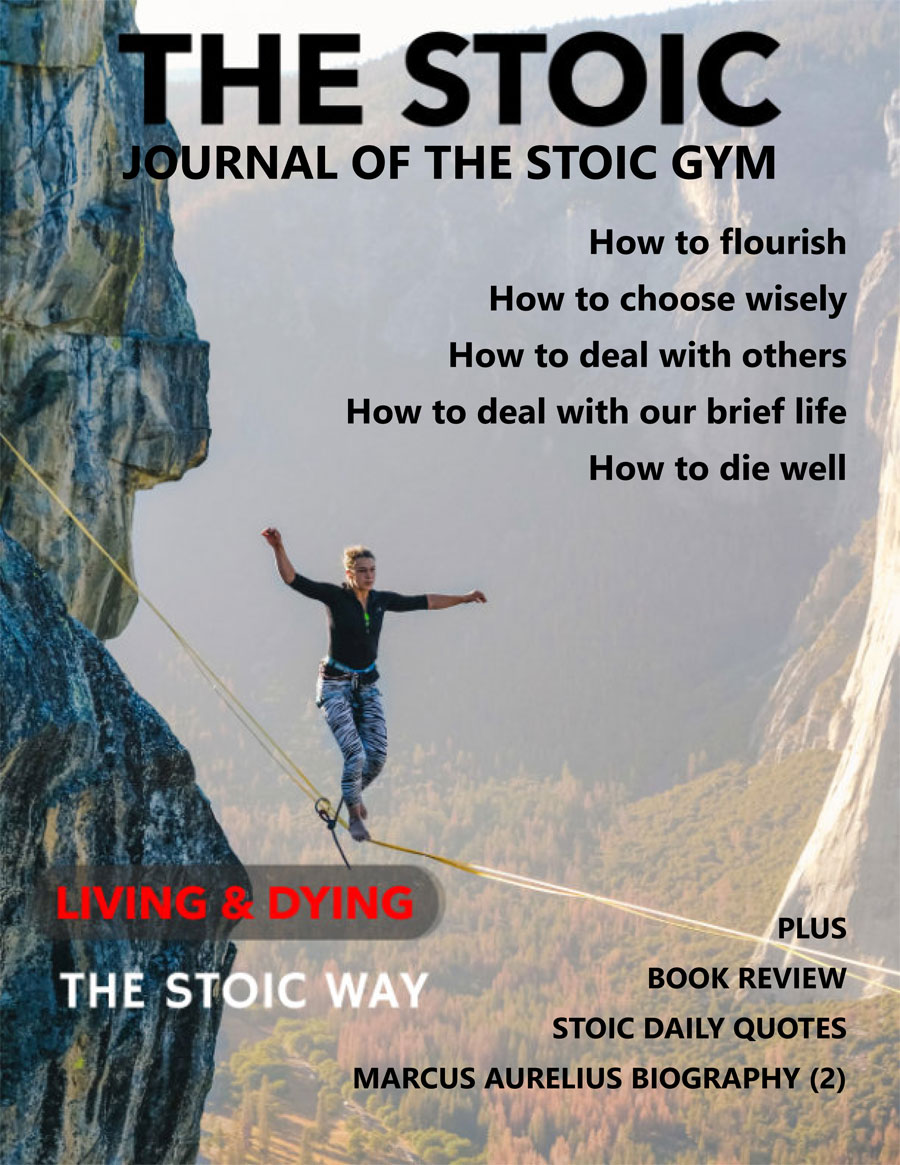 STOIC cover image